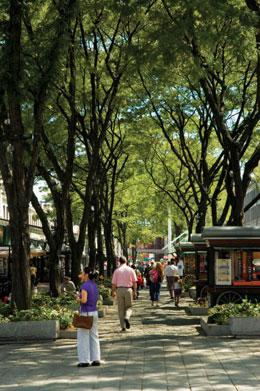 Econ Retail Pedestrian