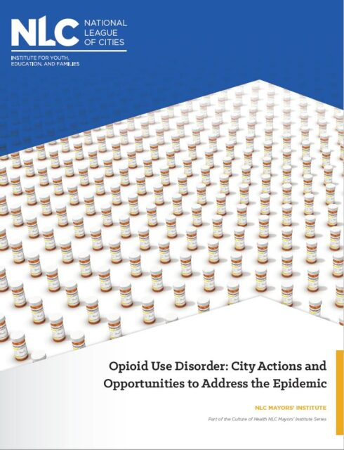 opioid backgrounder cover